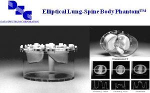 椭圆式肺部脊柱躯干模体
