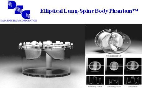 椭圆式肺部脊柱躯干模体™