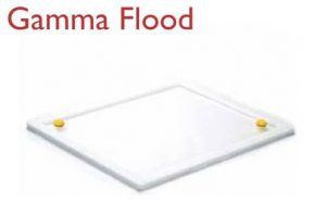 Gamma Flood泛源模体