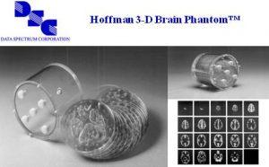 Hoffman 3D脑模体