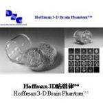 Hoffman 3D脑模体™