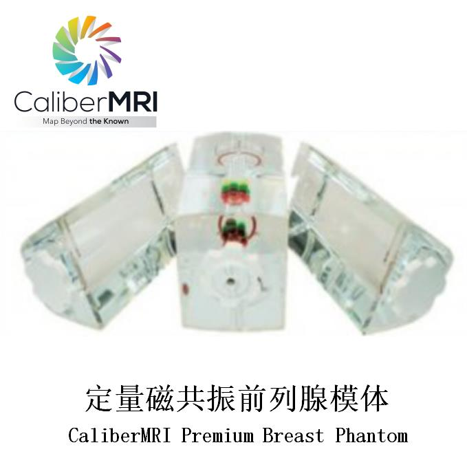 定量磁共振前列腺成像模体